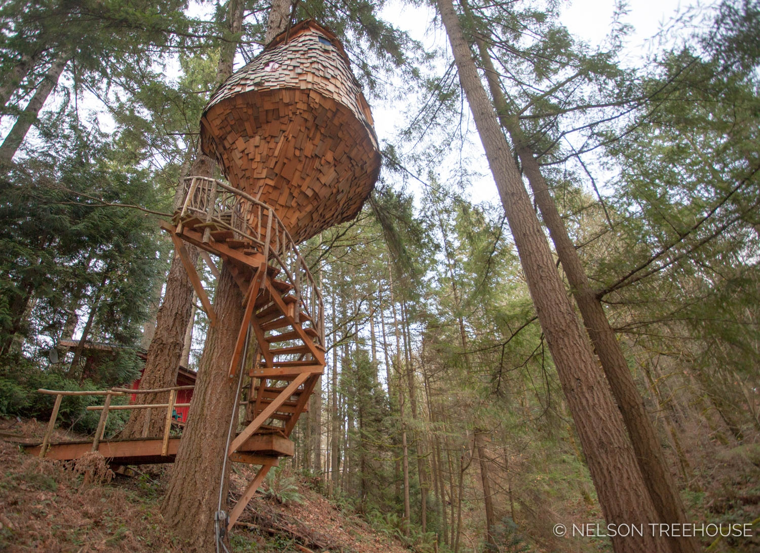 Winding Stairs Design And Construction — Nelson Treehouse   Spiral Staircase Around Tree Trunk   Stair Case   Nelson Treehouse   Staircase Design   Robert Mcintyre   Canopystair