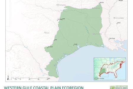 Amazing Gulf Coastal Plain Map Gallery - New Maps 2018 ...