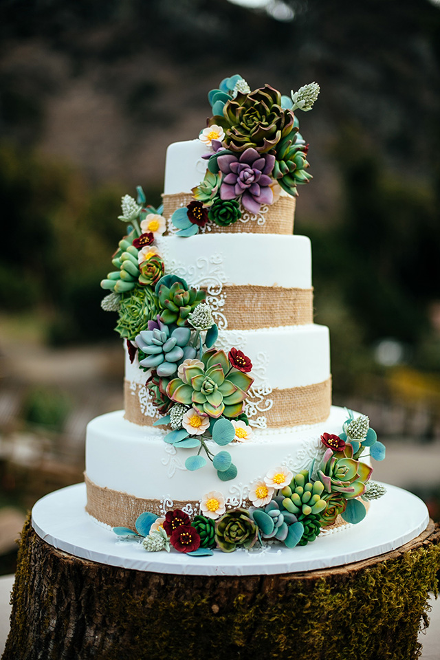 Wedding Cakes     Blue Lace Cakes Sugar Succulent wedding cake