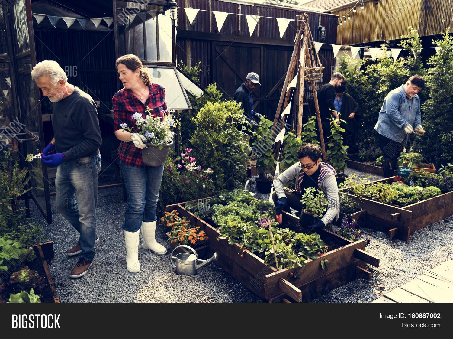 Group People Gardening Image & Photo (Free Trial) | Bigstock