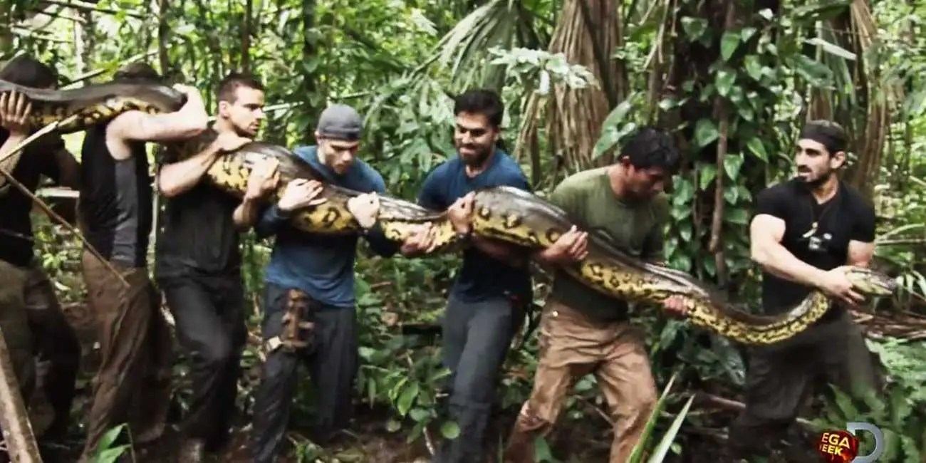 Discovery's 'Eaten Alive' Show With Anaconda Is Nonsense - Business Insider