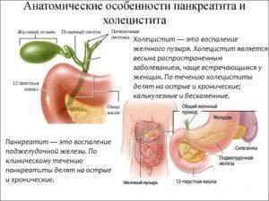 Уақытша, холецистит, панкреатит сахнасында жедел қабыну немесе созылмалы бар екенін көрсетеді