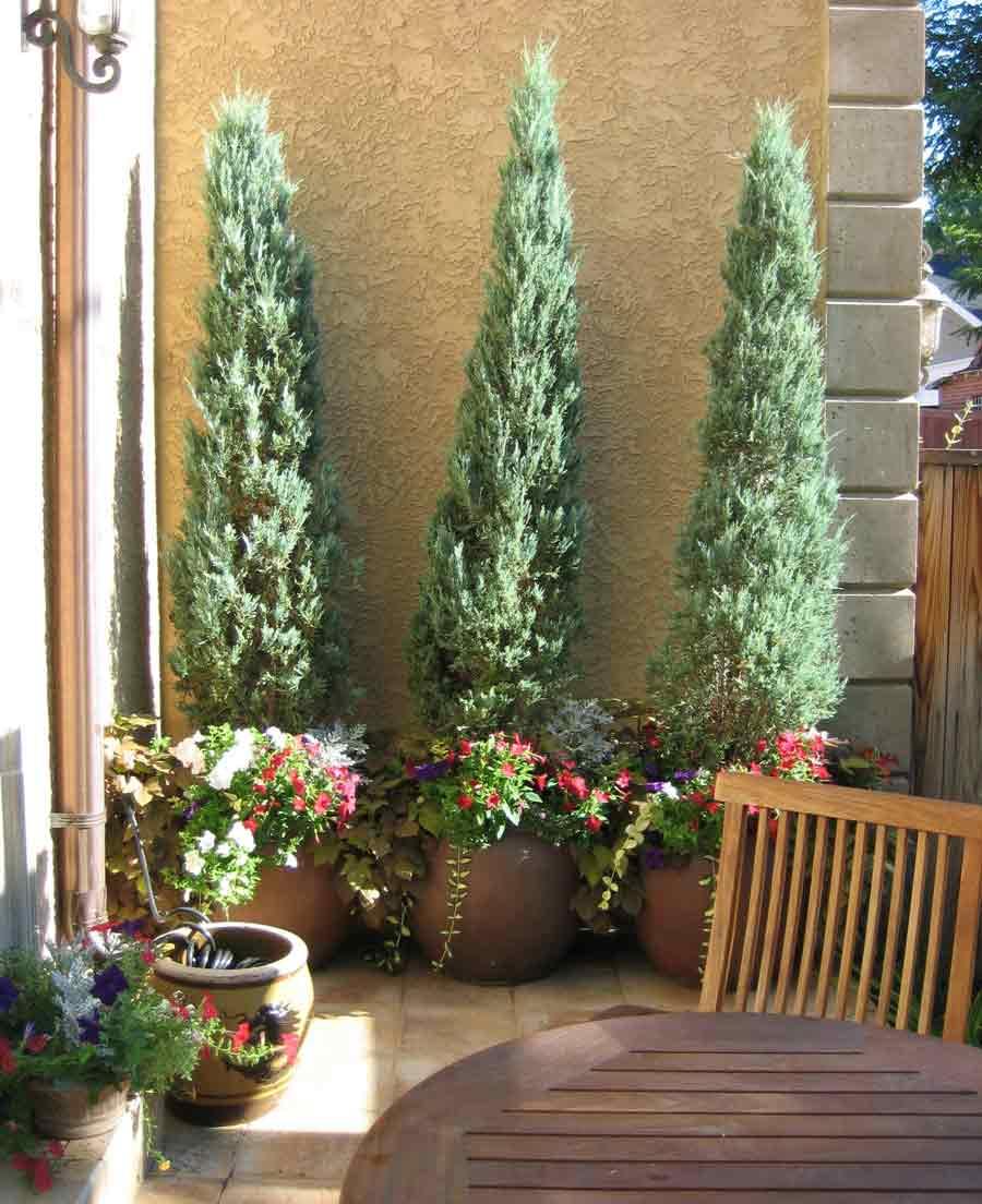 Tall Patio Planters