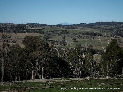 I Spy, Mt Spy – Finally! – Strathbogie Ranges – Nature View