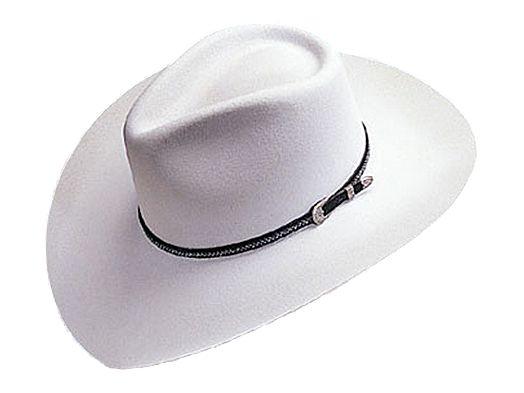 cowboy hat # 55