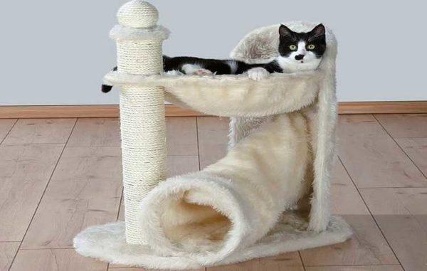 """Kombination af hængekøje og rør - et af """"lys"""" muligheder for en kat for en kat"""