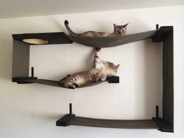 Kombination af hylder til katte med hængekøjer ... næsten kunstværk