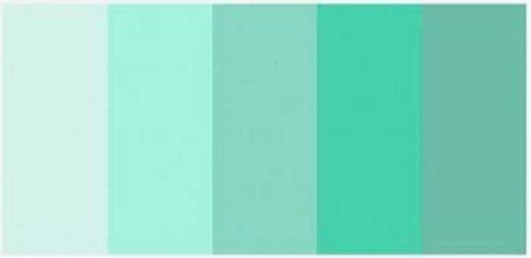 سایه های مختلف رنگ نعناع (نعناع)