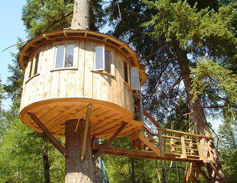 Ngôi nhà trên cây với bàn tay của bạn