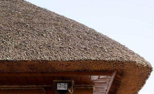 O telhado de palha é conveniente, incomum e barato