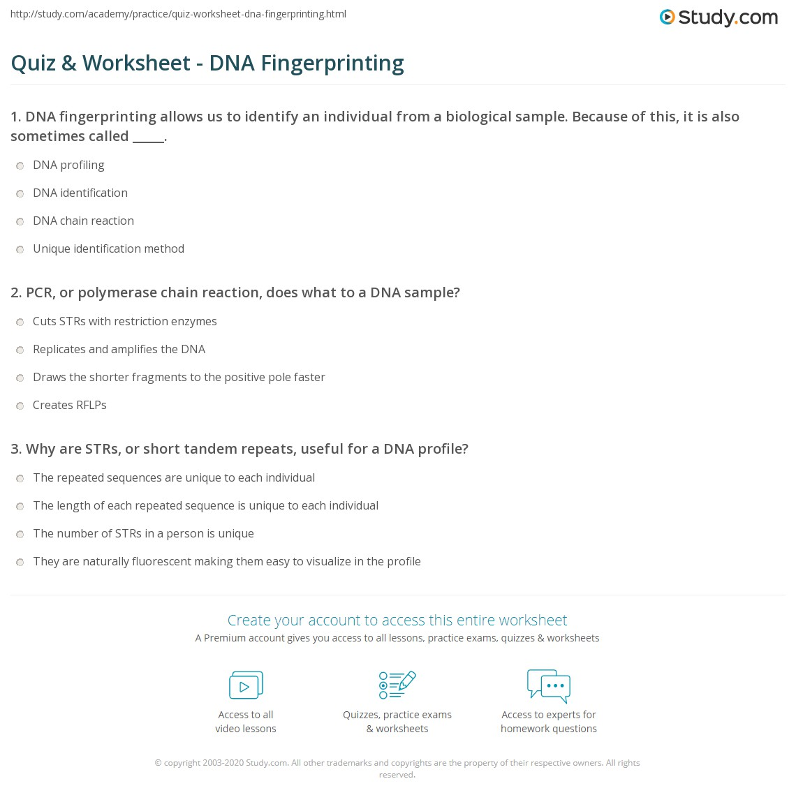 Quiz W Ksheet Dn F Gerpr T G Study