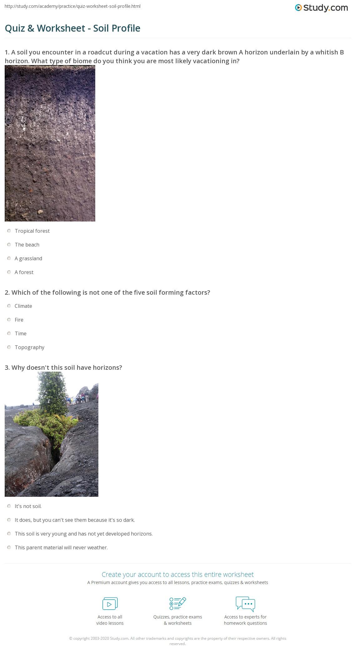 Quiz W Ksheet Il Profile Study