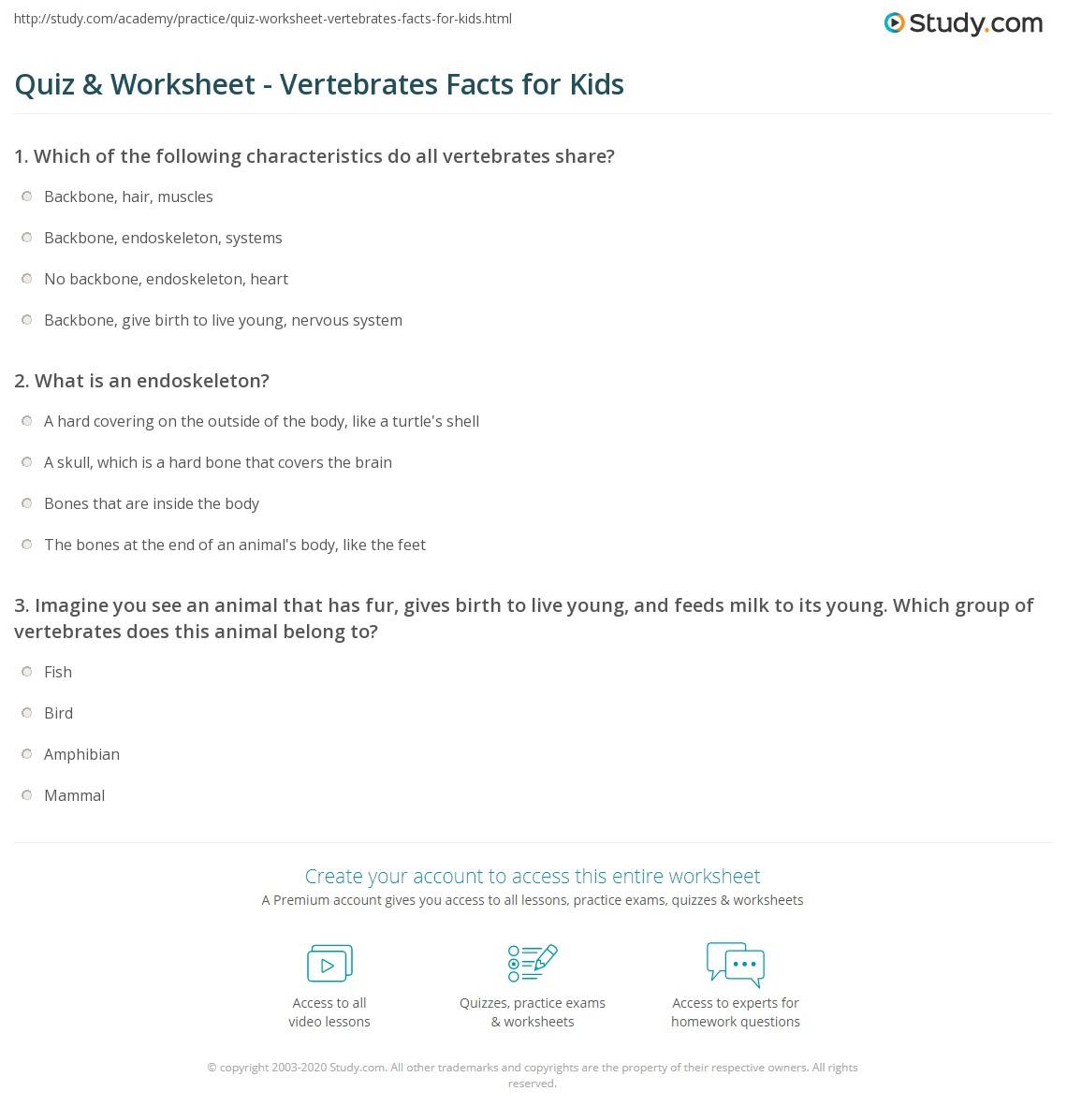 Quiz W Ksheet Vertebr Tes F Cts Kids Study