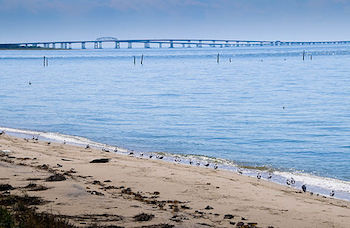Chesapeake Bay Bridge & Tunnel: Construction & Location ...
