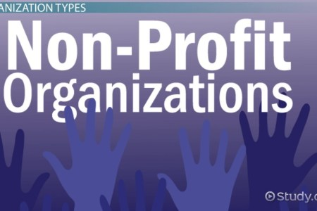 What Is a Non Profit Business    Definition   Example Business Plan     Not For Profit Organizations  Types   Examples