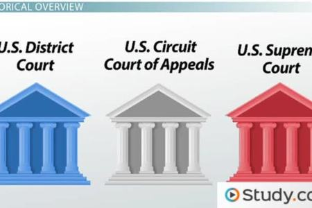 Us Federal Court System Chart 4k Pictures 4k Pictures Full Hq