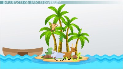 Island Biogeography: Theory, Definition & Graph - Video ...