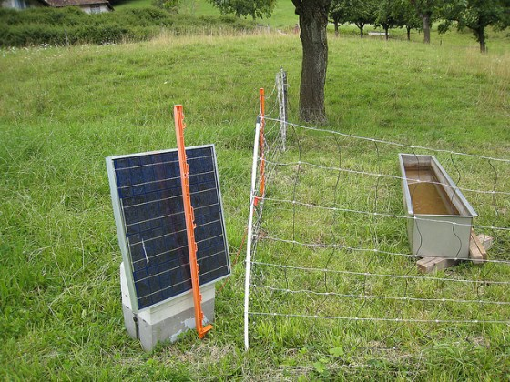 Green Farming  Solar Powered Electric Fence for Livestock Solar powered electric fence for sheep