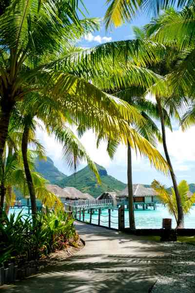 Our Honeymoon Part 2: Bora Bora French Polynesia (+video ...