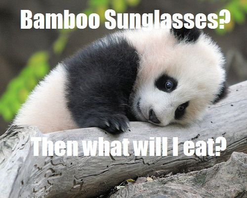 Sunglasses Meme, just the best ones! | Sunglasses Collector