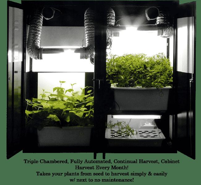 Hydroponic Grow Box Toronto