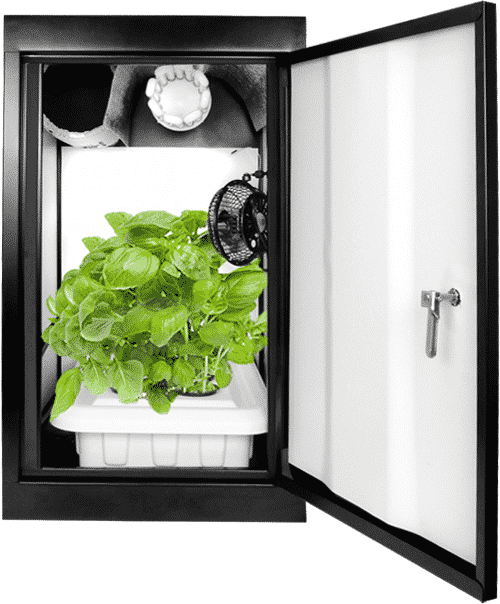 Misty Hydroponic Grow Box