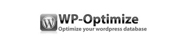 19 Plugins to Optimize WordPress