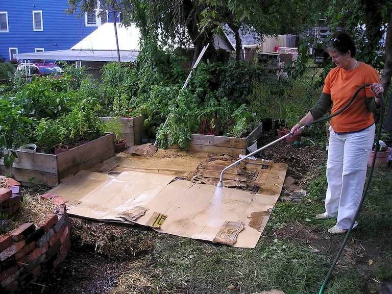 Preparing Above Ground Garden