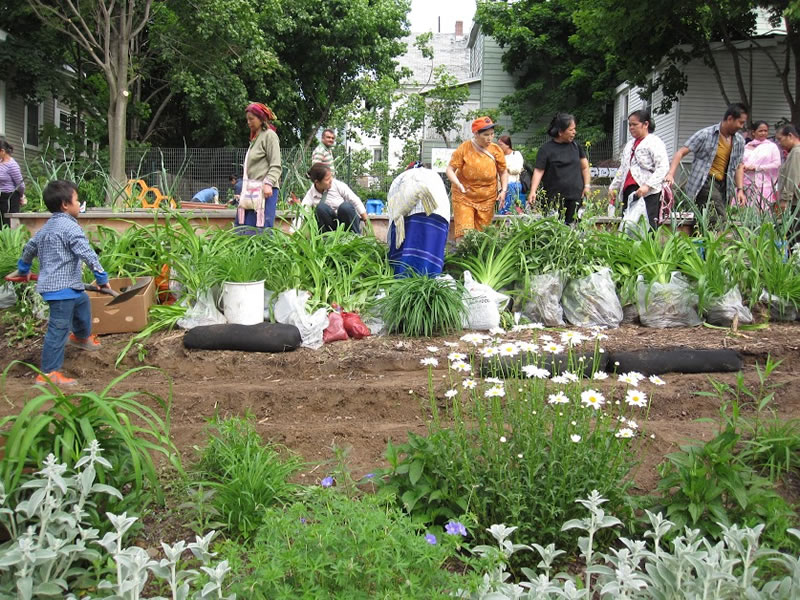 Isabella Street Tapestry Community Garden | Syracuse Grows