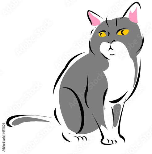 cat clipart transparent background - 900×800