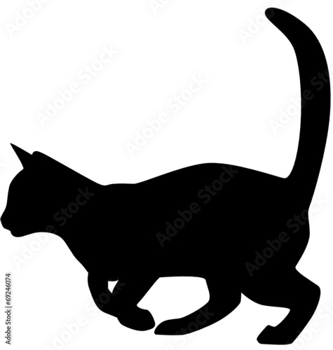 cat clipart transparent background - HD