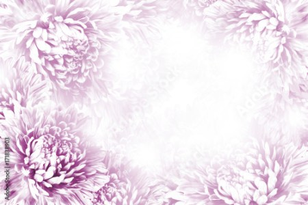 beautiful nature backgrounds flower frames » [HD Images] Wallpaper ...