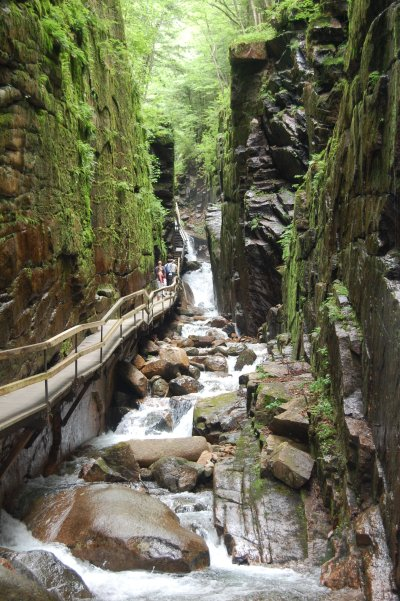 Franconia Notch State Park - The Flume - Franconia, NH ...