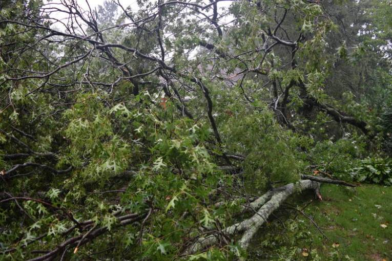More than 350 Customers Still Without Power in Wake of Sudden     More than 350 Customers Still Without Power in Wake of Sudden  Microburst   Storm
