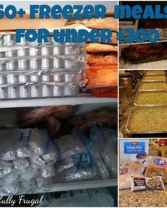 60 Freezer Meals, 3 Days, $300