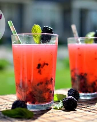 Blackberry Mint Lemonade www.tastefullyfrugal.org