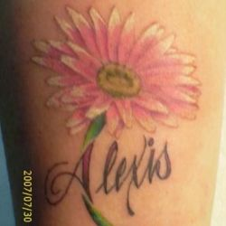 f9c3e4007458d Pink Daisies Flowers Tatoos | Gardening: Flower and Vegetables