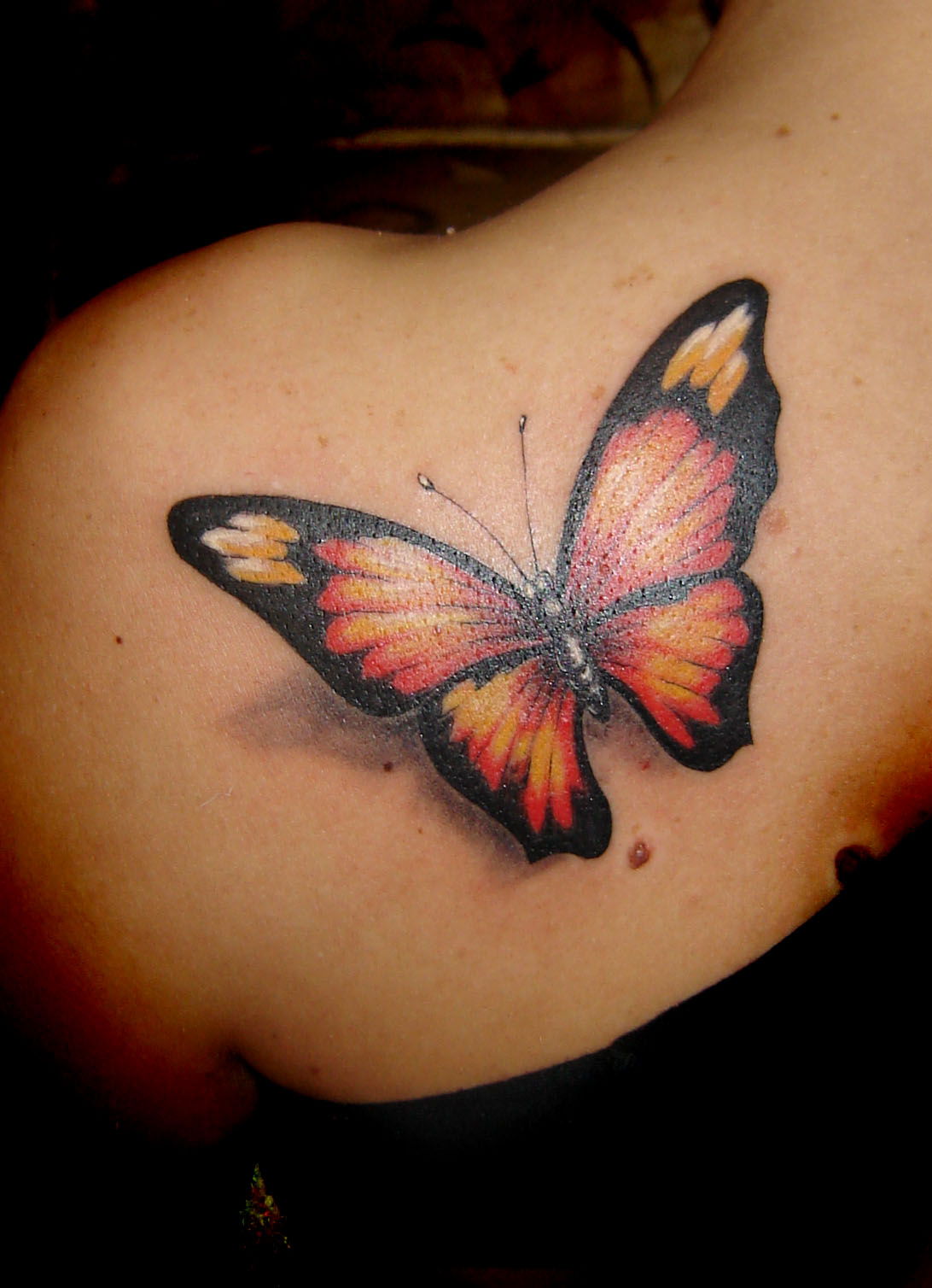 News Butterfly Butterfly Tattoos Ideas And Designs