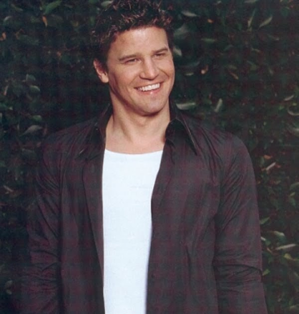 Tattoos With Meaning David Boreanaz Tattoos Ideas And Designs