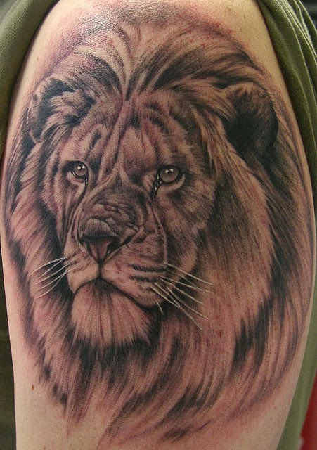 Amazing Tattoo World Realist 3D Lion Tattoo On Arm Ideas And Designs