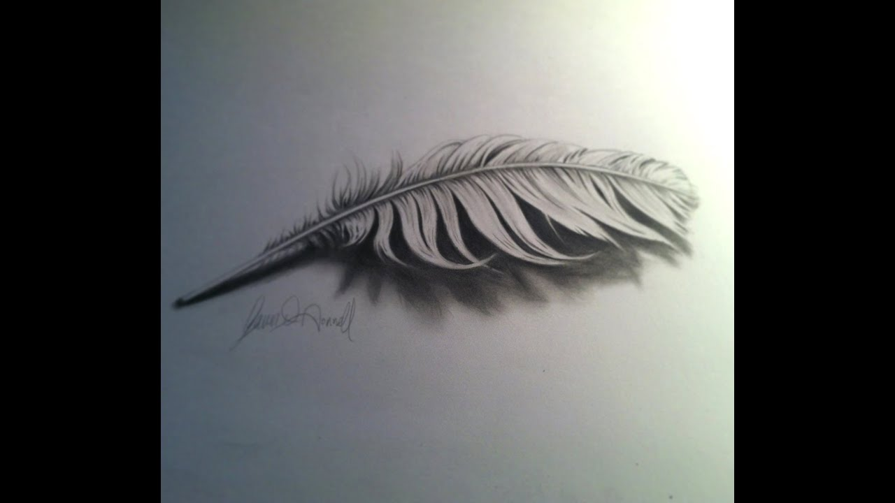 Drawing A 3D Feather Youtube Ideas And Designs