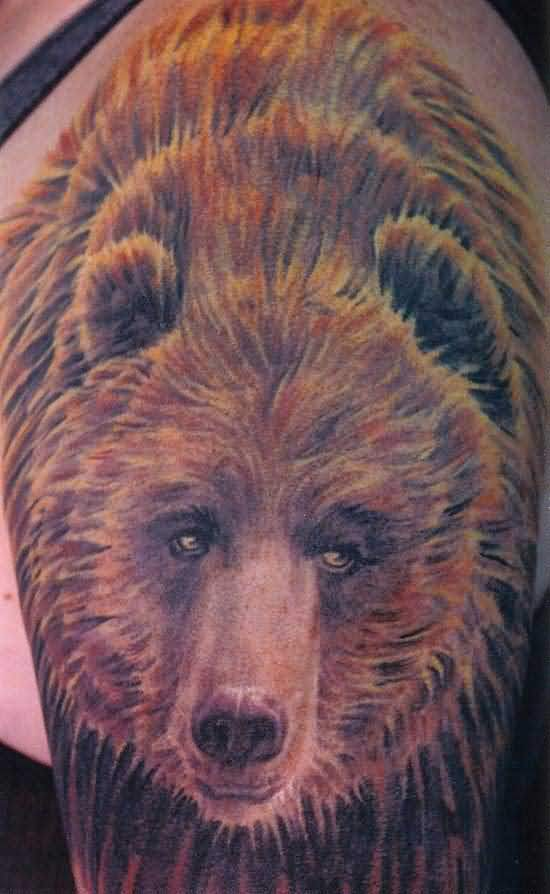 Bear Tattoos Page 16 Ideas And Designs