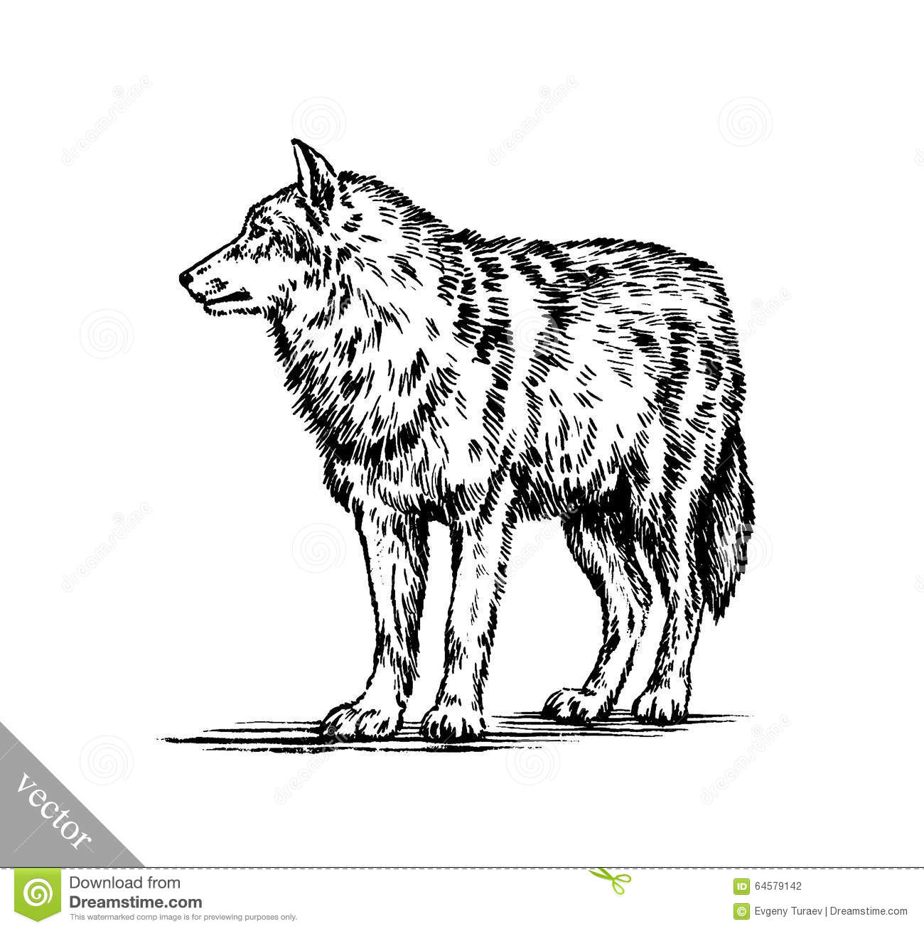 28 Native Black And White Wolf Quot Yin And Yang Ideas And Designs