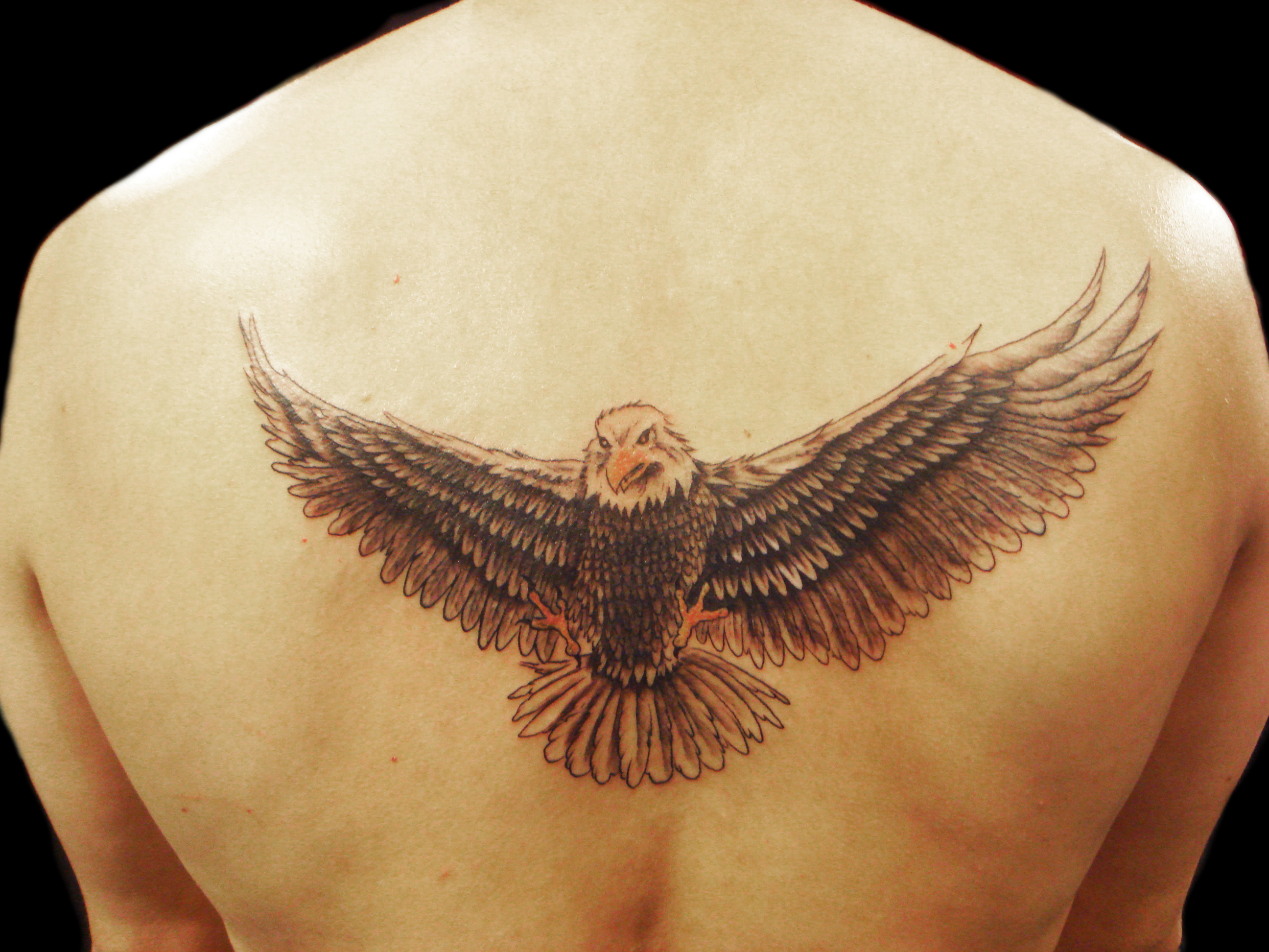 Eagle Tattoos Designs Ideas And Meaning Tattoos For You Ideas And Designs