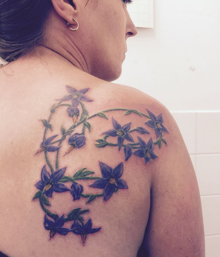 42 Best Deadly Nightshade Tattoo Inspiration Images On Ideas And Designs
