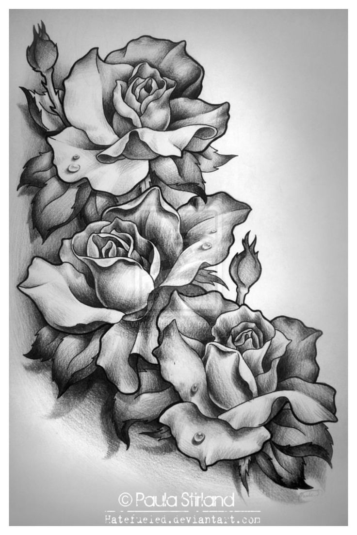 Roses For My Watchers X By Hatefueled Deviantart Com On Ideas And Designs