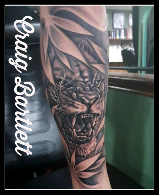 Adorned Tattoo Lion Tattoo Tattoos Lion Chest Tattoo Ideas And Designs