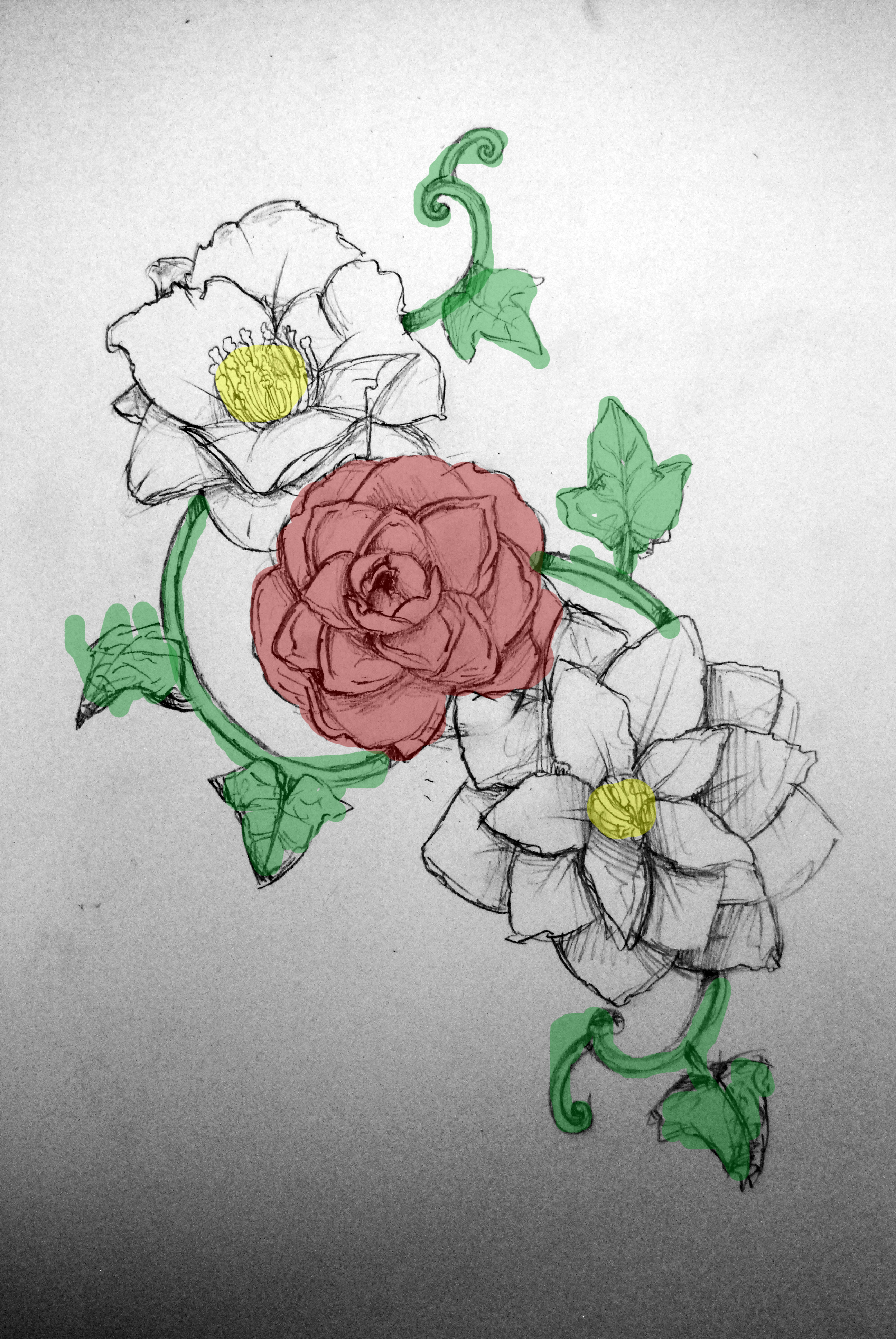 Tattoo Design Camellias Thoughts And Walks Blog Ideas And Designs
