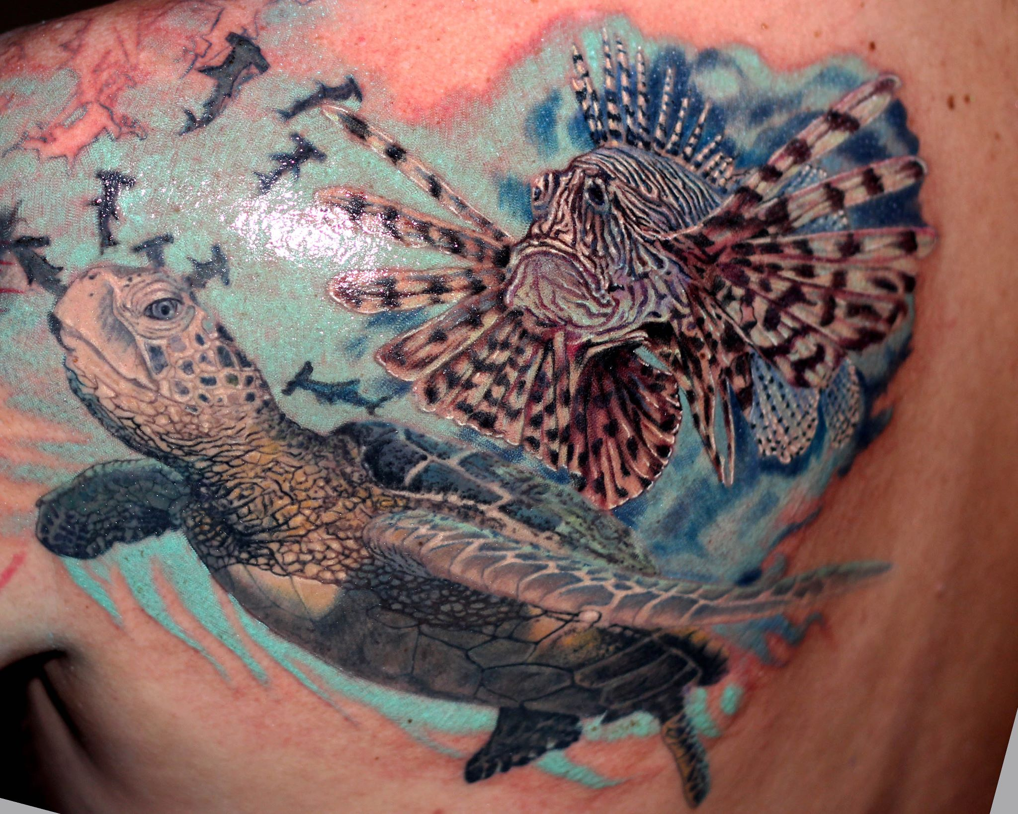 Best Tattoo Shops In Miami Miami Tattoos South Beach Coral Springs Fl Ideas And Designs