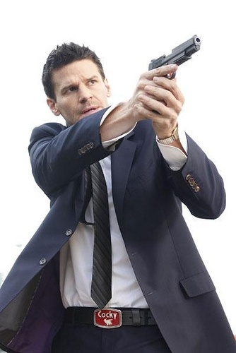 David Boreanaz As Special Agent Seeley Booth Of The Fbi Ideas And Designs